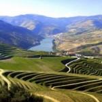 Le Portugal devrait développer des projets de tourisme de luxe et relancer l'agriculture