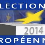 Près de 20% du Parlement européen occupé par les eurosceptiques