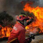 Portugal : Plus de 128 000 hectares de forêt détruits par les flammes en 2017