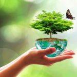 Sauver la nature est indispensable pour le «bien-être» de l'Homme